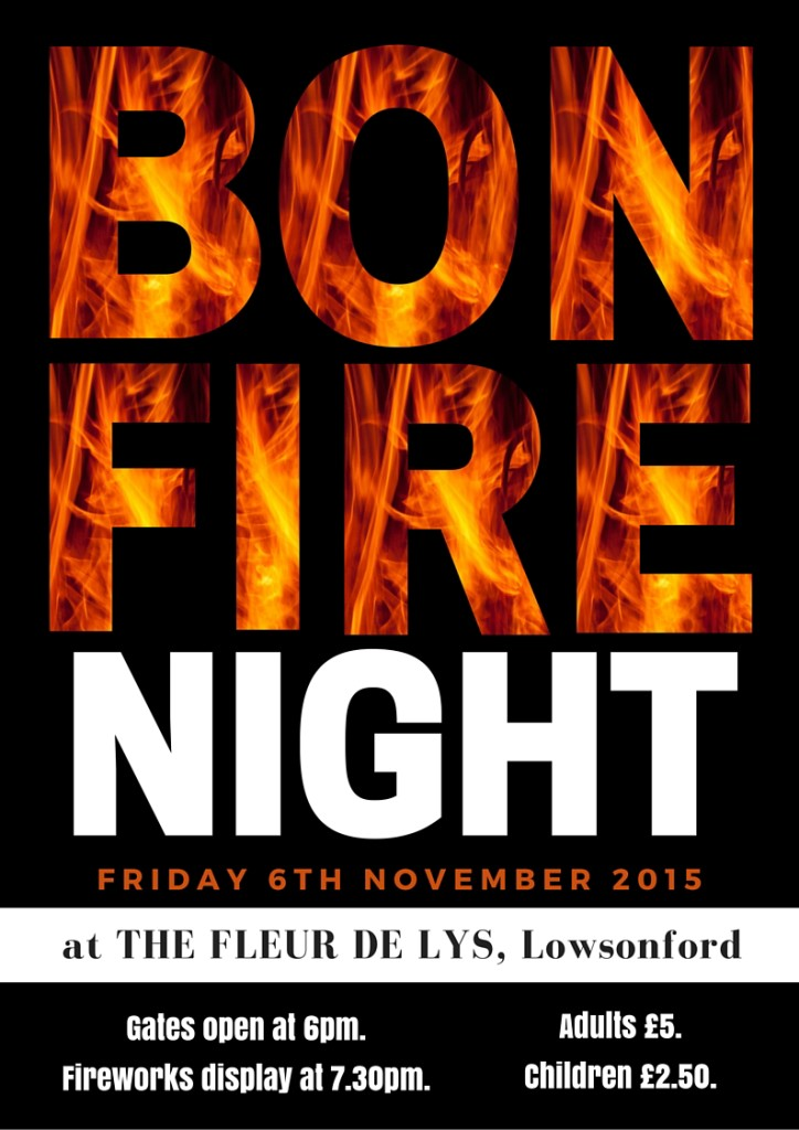 Bonfire night 2015